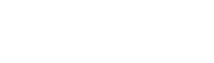 Copenhagen Translation
